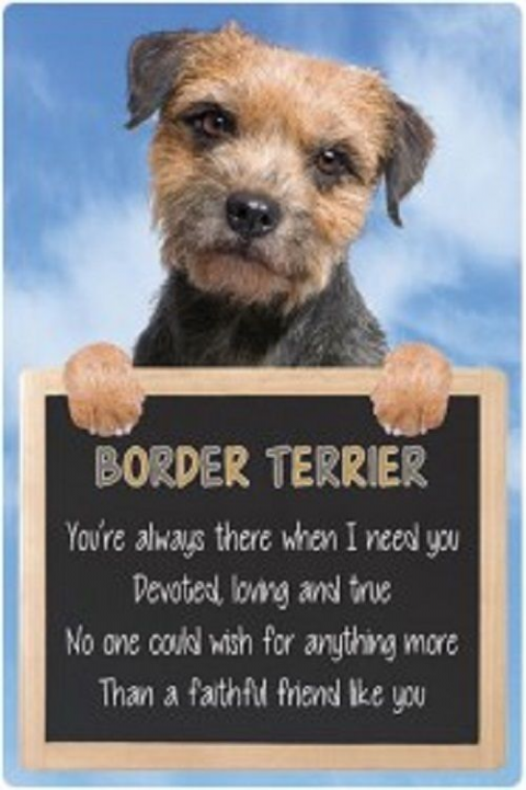 Border Terrier  3D home hang up sign